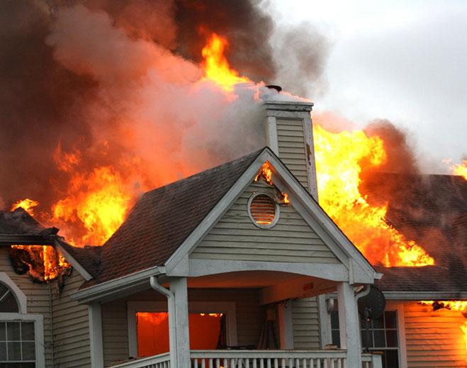 wildfire-659-x-519